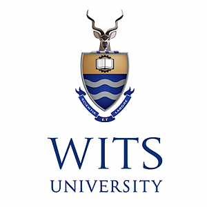 WITS_square.png
